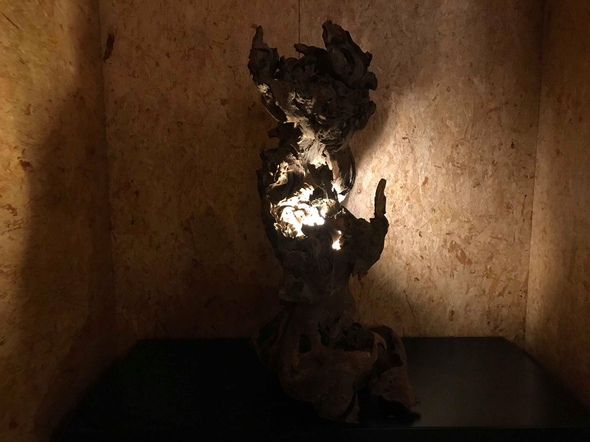 1- D Lampe mangrove